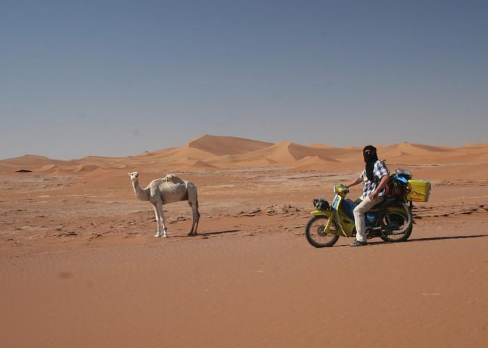 Extreme Trifle Wrong Way Round Sahara Moped Rally