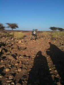 sahara river bed